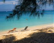 Relaxing in the Sun - Cayman Islands, Caribbean